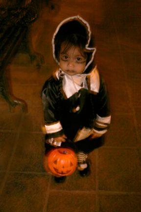 Spooky-e1540752601642.jpg